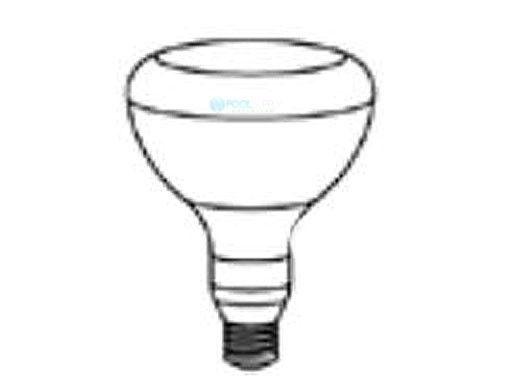 Pentair Floodlamp Medium Base | 100W 12V | 79101800