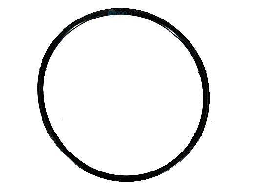 Pentair Diffuser O-Ring | 355227 355227Z