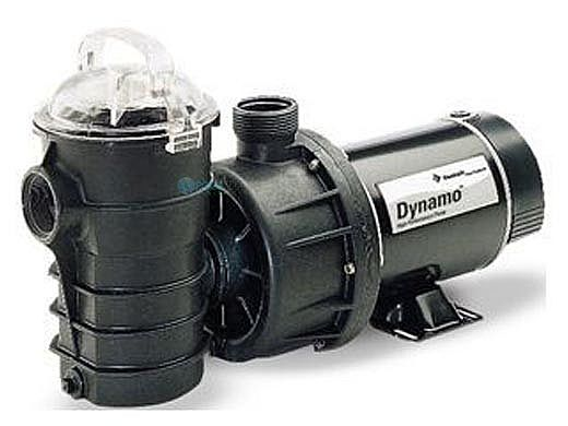 Pentair Dynamo .75HP Above Ground Pool Pump with 3' Cord 115V | 340194