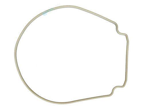 Pentair WhisperFlo & IntelliFlo Seal Plate Gasket   Almond   357102 357102Z
