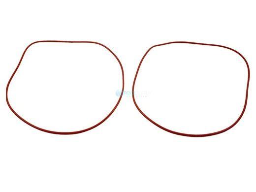 Raypak O-Ring Gasket Set | Set of Two | 006713F