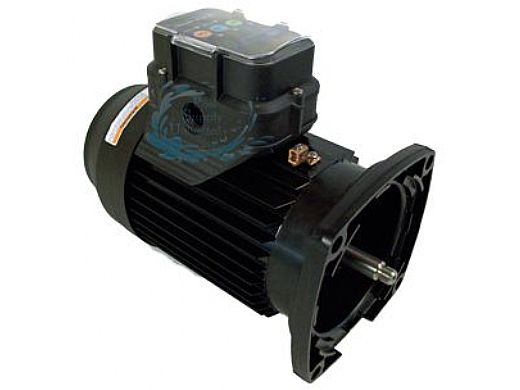 Marathon Electric Variable Speed Square Flange Pool Motor