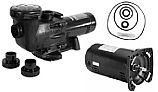 Seal and Gasket Kit for Hayward Max-Flo II Pool Pumps | Go-KitMaxFlo2