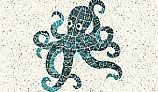 AquaStar Swim Designs Octopus Stencil Only | White | F1008-01