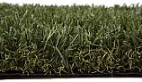 EasyTurf SimplyFresh Standard Backing Artificial Grass | Field Green and Olive Thatch | 15'x1' Increments | CSLOW-O