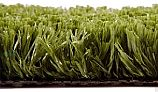 EasyTurf Professional Artificial Putting Green | Golf Green | 15'X1' Increments | UG-PUTT2