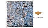 National Pool Tile Gemstone 6x6 Single Bullnose Pool Tile | Blue | GMS-BLUE SBN
