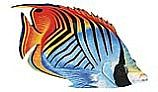 Porcelain Mosaic Reef Fish   Threadfin Butterfly   PORC-TF25-9