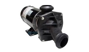 Jacuzzi/Sundance Pumps